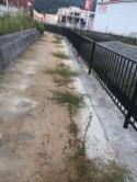「真砂土の真実」 歩道・エクステリア・土間コン・舗装・草