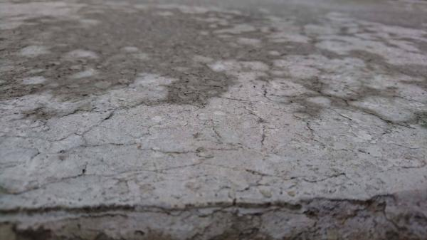 「土間コンの常識を変える」 水勾配・メッシュ・水引き・ブリーディング・仕上げ・初期凍害