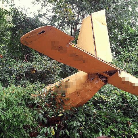 「起業とは崖から飛び降り、落ちるまでに飛行機を組み立てるようなもの」(週刊生コン 2020/02/03)