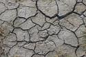 「コンクリートひび割れ川柳」 伝え方を考える