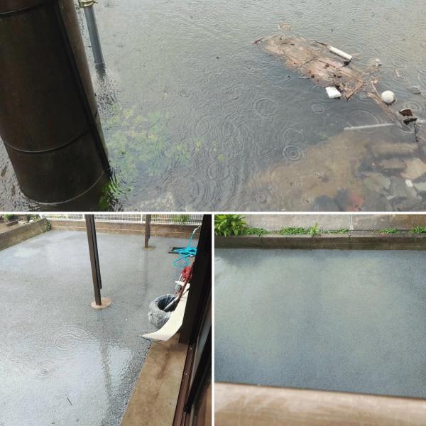 【宮崎】「濡れずに歩けるのはうちの庭だけでした」台風17号・透水性コンクリート性能